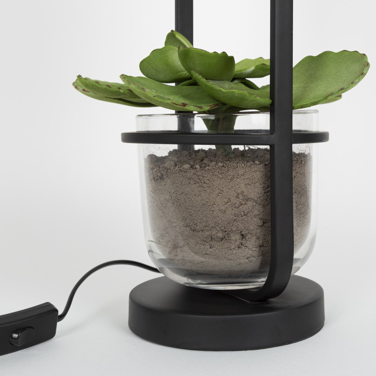 Exklusive Stehlampe Seeds 3 - Moderne Stehleuchte für Innen